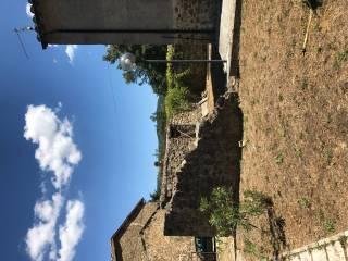 Foto - Rustico / Casale Località Case Danti, Selva, Santa Fiora