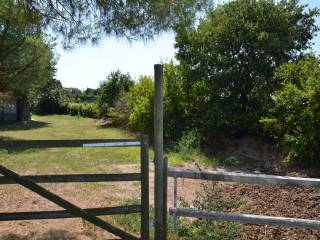 Foto - Terreno agricolo in Vendita a Pastrengo