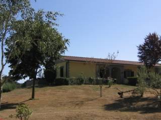 Foto - Villa 100 mq, Oriolo Romano