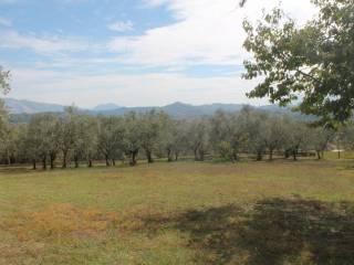 Foto - Terreno agricolo in Vendita a Chieti