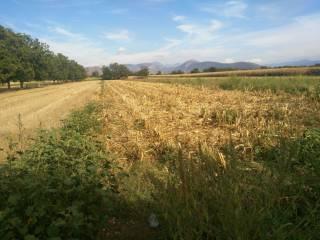 Foto - Terreno agricolo in Vendita a San Marco Evangelista