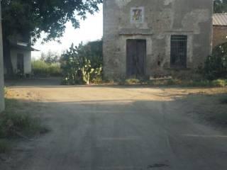 Foto - Terreno agricolo in Vendita a San Marcellino