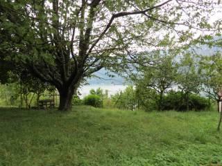 Foto - Terreno agricolo in Vendita a Claino con Osteno