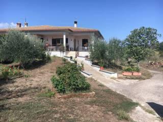Foto - Villa via Grotte Finocchiara, Monterosi