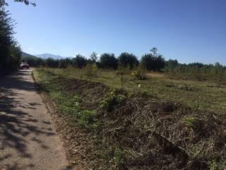 Foto - Terreno agricolo in Vendita a Vairano Patenora