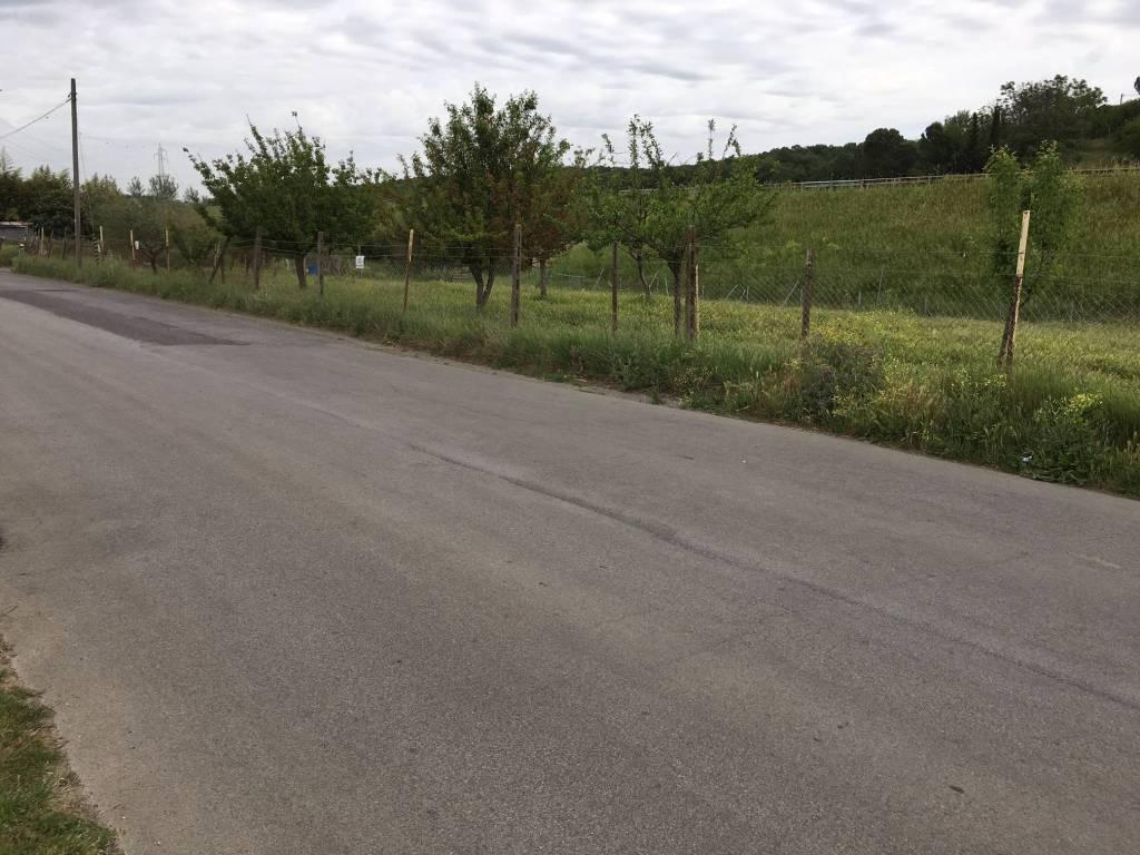 foto  Terreno agricolo in Vendita a Mentana