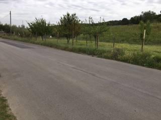 Foto - Terreno agricolo in Vendita a Mentana