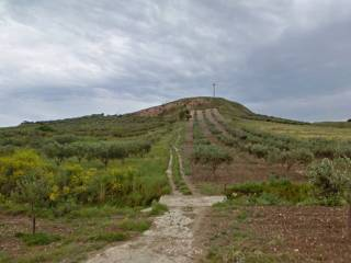 Foto - Terreno agricolo in Vendita a Paceco