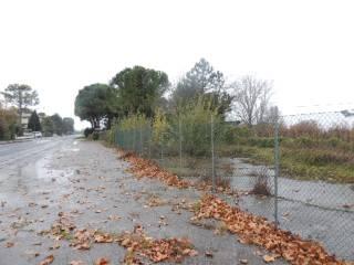 Foto - Terreno agricolo in Vendita a Faenza