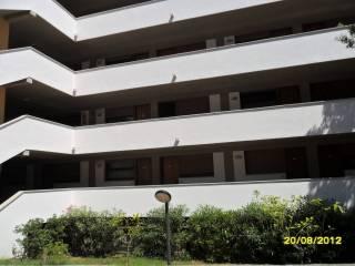 Foto - Trilocale via dei Gabbiani 5, Procchio, Marciana