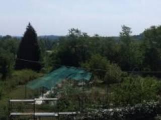 Foto - Terreno agricolo in Vendita a Albese con Cassano