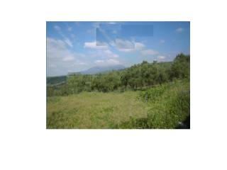 Foto - Terreno agricolo in asta a Campagna