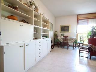 Foto - Appartamento buono stato, primo piano, Tiro a Segno, Grosseto