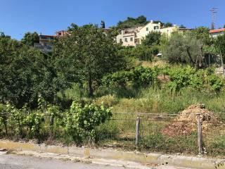 Foto - Terreno edificabile residenziale a Calice Ligure