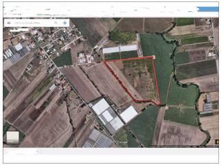 Foto - Terreno agricolo in Vendita a Aprilia