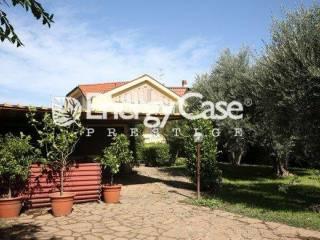 Foto - Villa via di Passo Lombardo, Tor Vergata, Roma