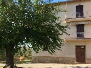 Foto - Casa indipendente Cortoreggio, Terontola, Cortona