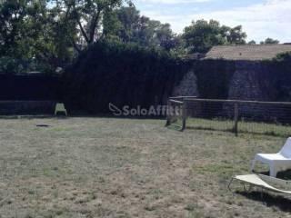 Foto - Terreno agricolo in Affitto a Brugherio