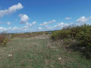 Foto - Terreno agricolo in Vendita a Villa Literno