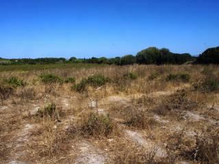 Foto - Terreno agricolo in Vendita a Sant'Antioco