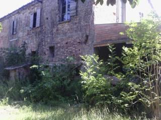 Foto - Rustico / Casale, da ristrutturare, 6000 mq, Savignano sul Rubicone