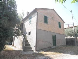Foto - Rustico / Casale via Sacca, Borgaccio, Colli al Metauro