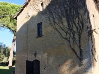 Foto - Rustico / Casale Località Vigna di Valle, Circumlacuale, Bracciano