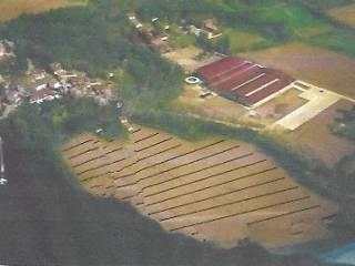 Foto - Terreno edificabile commerciale a Pagnacco