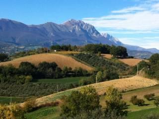 Foto - Terreno agricolo in Vendita a Loreto Aprutino
