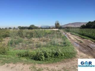Foto - Terreno agricolo in Vendita a Marigliano