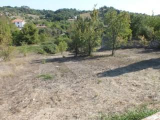 Foto - Terreno edificabile residenziale a Torricella in Sabina