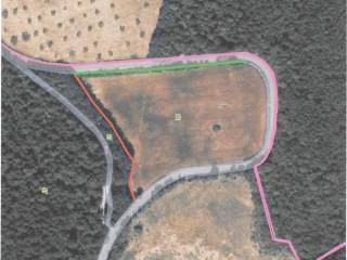 Foto - Terreno agricolo in Affitto a Sovicille