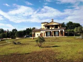 Foto - Villa, nuova, 250 mq, Gesualdo