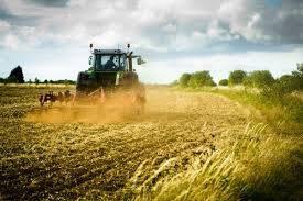 Foto - Terreno agricolo in Vendita a Crema