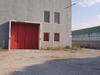 Immobile Affitto Città Sant'Angelo