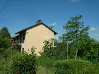 Foto - Appartamento frazione Valmezzana, 25, Cortazzone