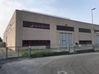 Immobile Affitto Povegliano Veronese