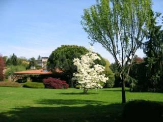 Foto - Villa, ottimo stato, 551 mq, Masnago, Varese