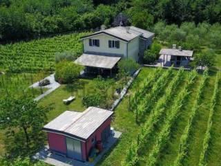 Foto - Villa, ottimo stato, 210 mq, Leivi