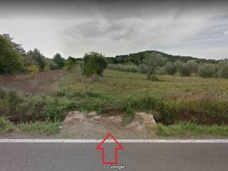 Foto - Terreno agricolo in Vendita a Sorano