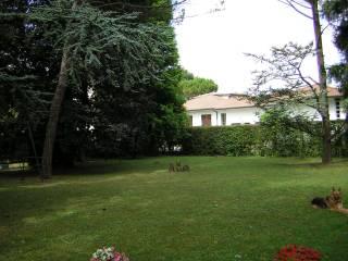 Foto - Terreno edificabile residenziale a Noventa Padovana
