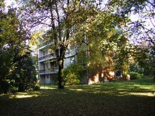 Foto - Palazzo / Stabile, buono stato, Noventa Padovana