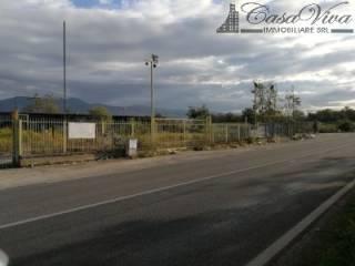Foto - Terreno edificabile industriale a Pignataro Maggiore