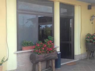 Attività / Licenza Affitto Terracina