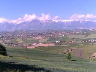 Foto - Terreno agricolo in Vendita a Castel Frentano