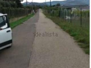 Foto - Terreno agricolo in Vendita a Zagarolo