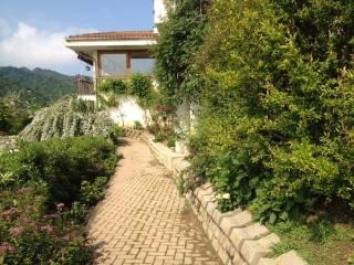 Foto - Villa, buono stato, 300 mq, Casalborgone