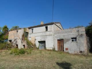 Foto - Rustico / Casale Contrada Tesino, Cossignano