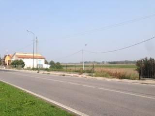 Foto - Terreno edificabile commerciale a Ronco all'Adige