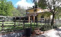 Foto - Villa, ottimo stato, 130 mq, Pedara